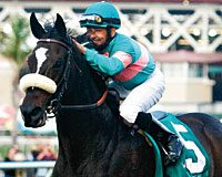 Street Cry – Vertigineux, by Kris S KEESEP05 $60,000. At 4: Breeders' Cup Ladies' Classic-G1, Apple Blossom H.-G1, Vanity H.-G1, Lady's Secret S.-G1, El Encino S.-G1, Milady H.-G2, Clement L. Hirsch H.-G2 At 5: Breeders' Cup Classic-G1, Vanity H.-G1, Clement L. Hirsch H.-G1, Lady's Secret S.-G1, Milady H.-G1 At 6: Santa Margarita H.-G1, Apple Blossom H.-G1, Vanity H.-G1, Clement L. Hirsch S.-G1, Lady's Secret S.-G1 2010 Horse of the Year 2010 Eclipse  Champion Older Mare 2009 Eclipse Champion Older Mare 2008 Eclipse Champion Older Mare Breeder: Maverick Productions