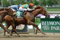 Afleet Alex – Miss Yiayia, by Gilded Time Raised and broken at Winter Quarter; Eight-time stakes winner, Graded-placed earner over $600,000 Breeder: Waterville Lake Stables