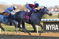 Broken Vow – Life (FR), by Anabaa At 3: 2nd Sir Barton S., 3rd Easy Goer S. At 6: 2nd Gravesend S., Donald LeVine Memorial S., 3rd Fall Highweight H.-G3, Diablo S. At 7: Fall Highweight H.-G3 Breeder: C. Clement